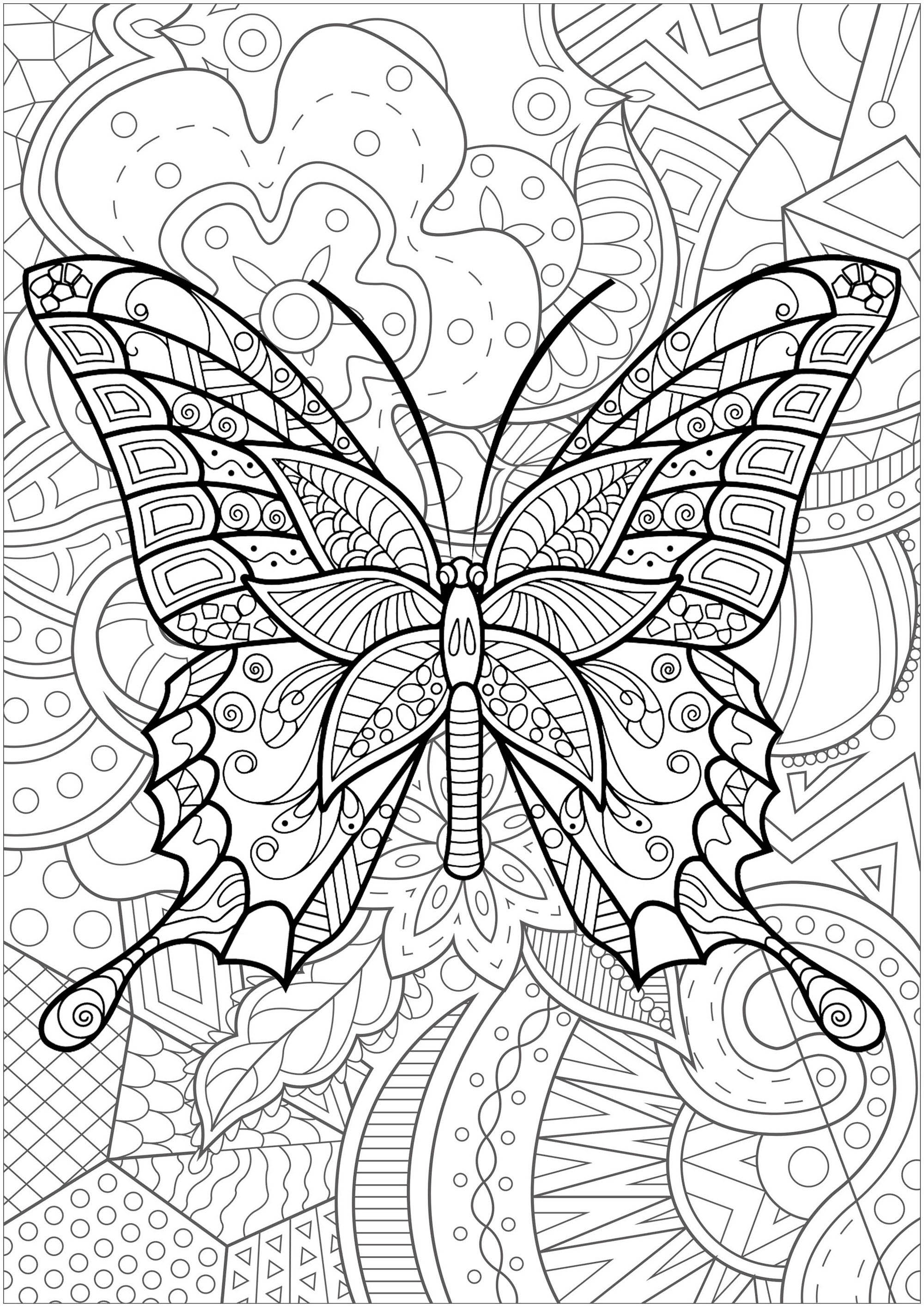 Magnifique papillon avec motifs, et fond fleuri - 3
