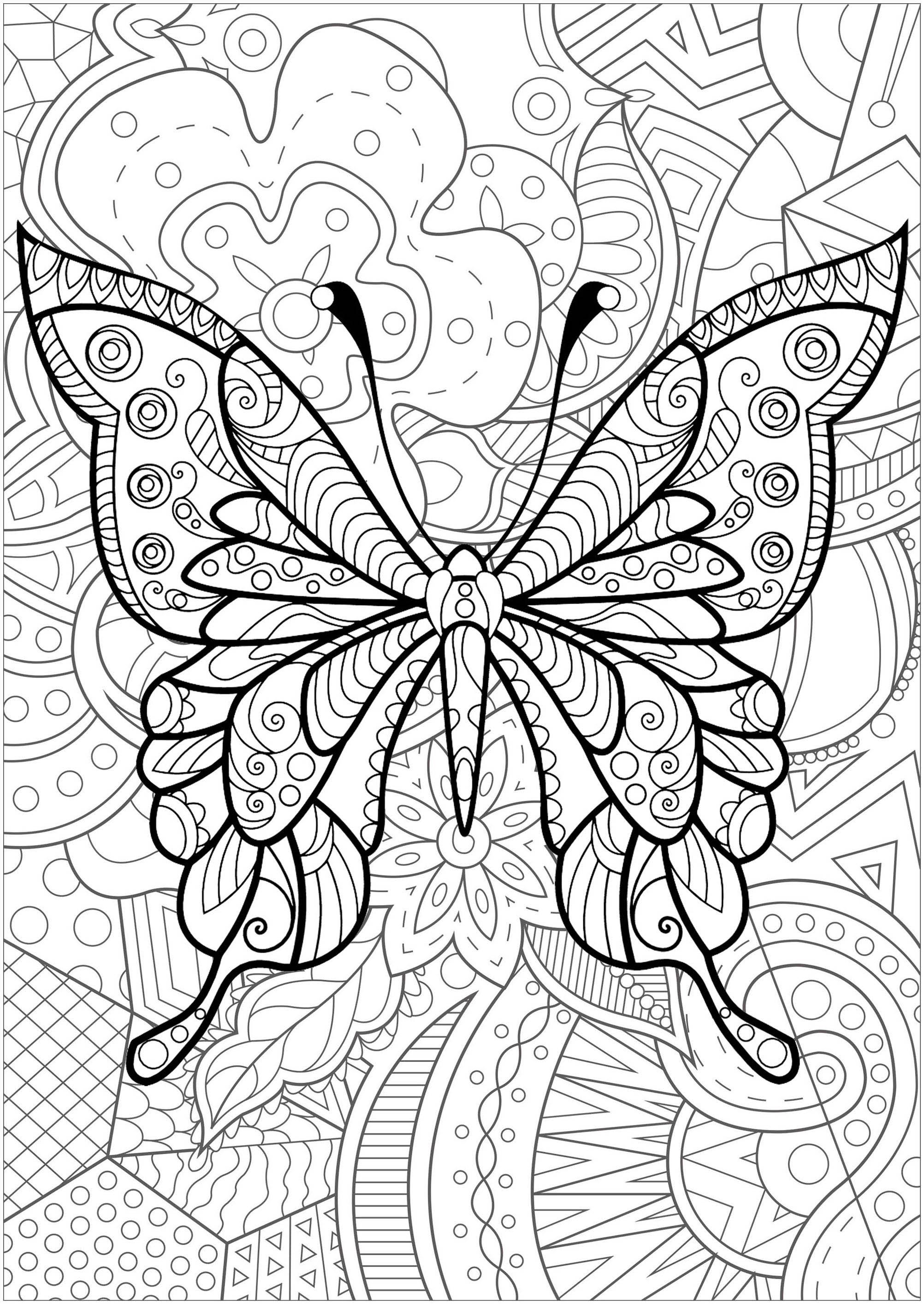 Magnifique papillon avec motifs, et fond fleuri - 4