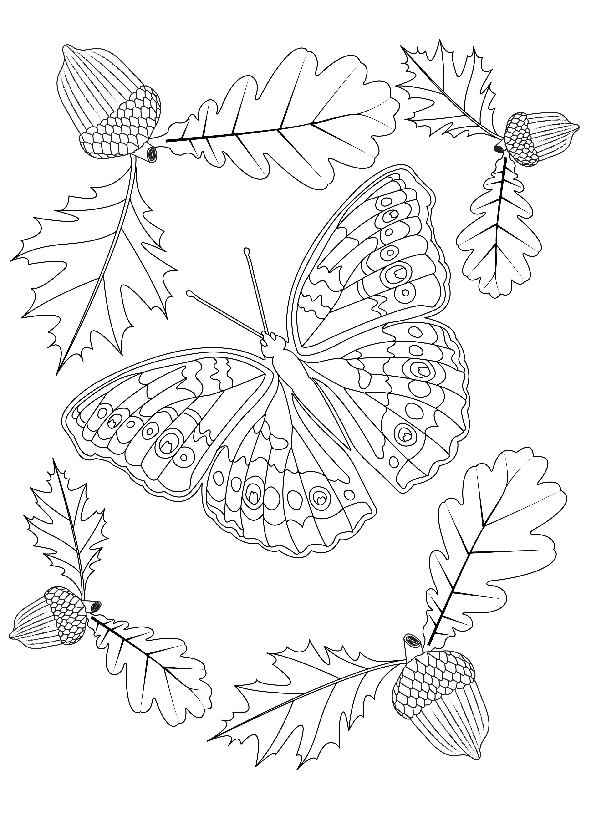 Papillon d automne papillons insectes coloriages difficiles pour adultes - Coloriage de papillon ...