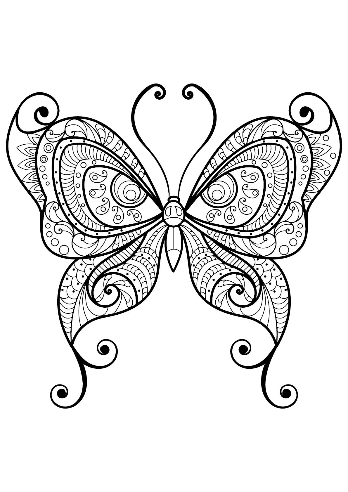 Papillon jolis motifs 10 papillons insectes coloriages difficiles pour adultes - Coloriage de papillon ...