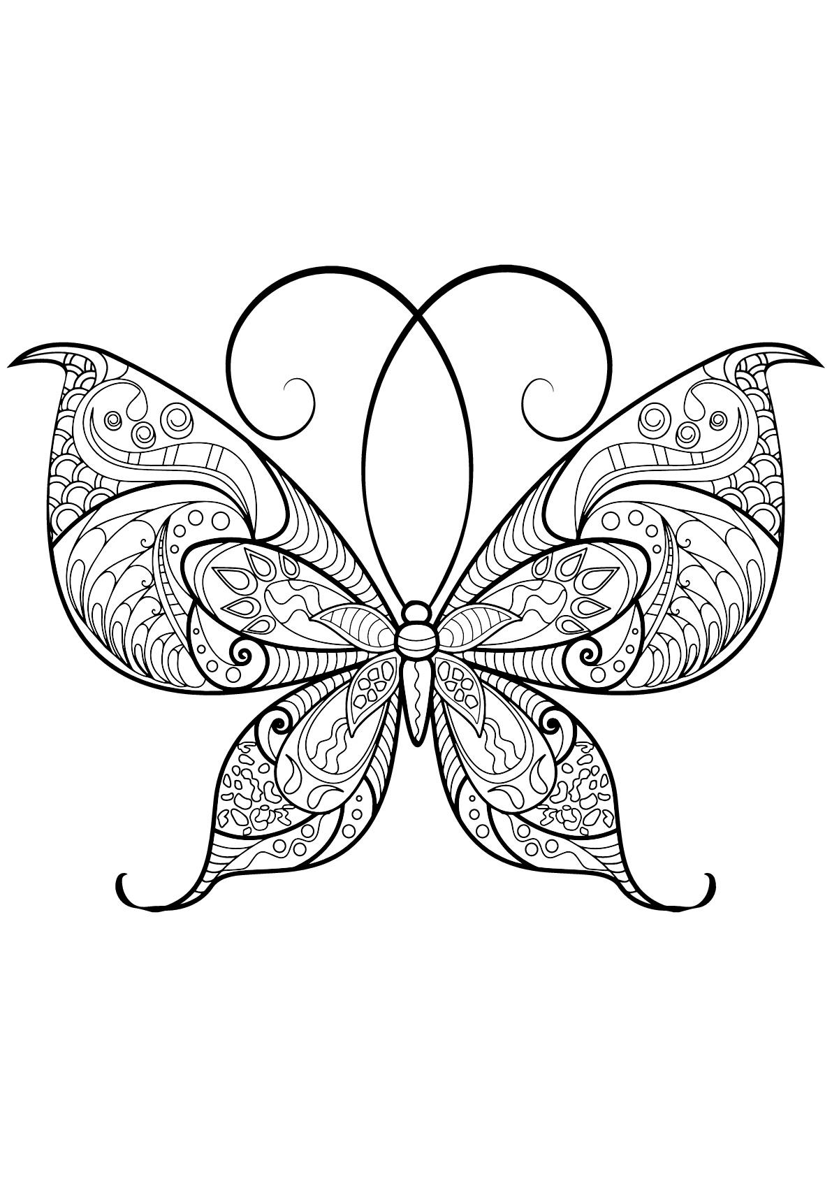 Papillon jolis motifs 13 papillons insectes coloriages difficiles pour adultes - Coloriage de papillon ...