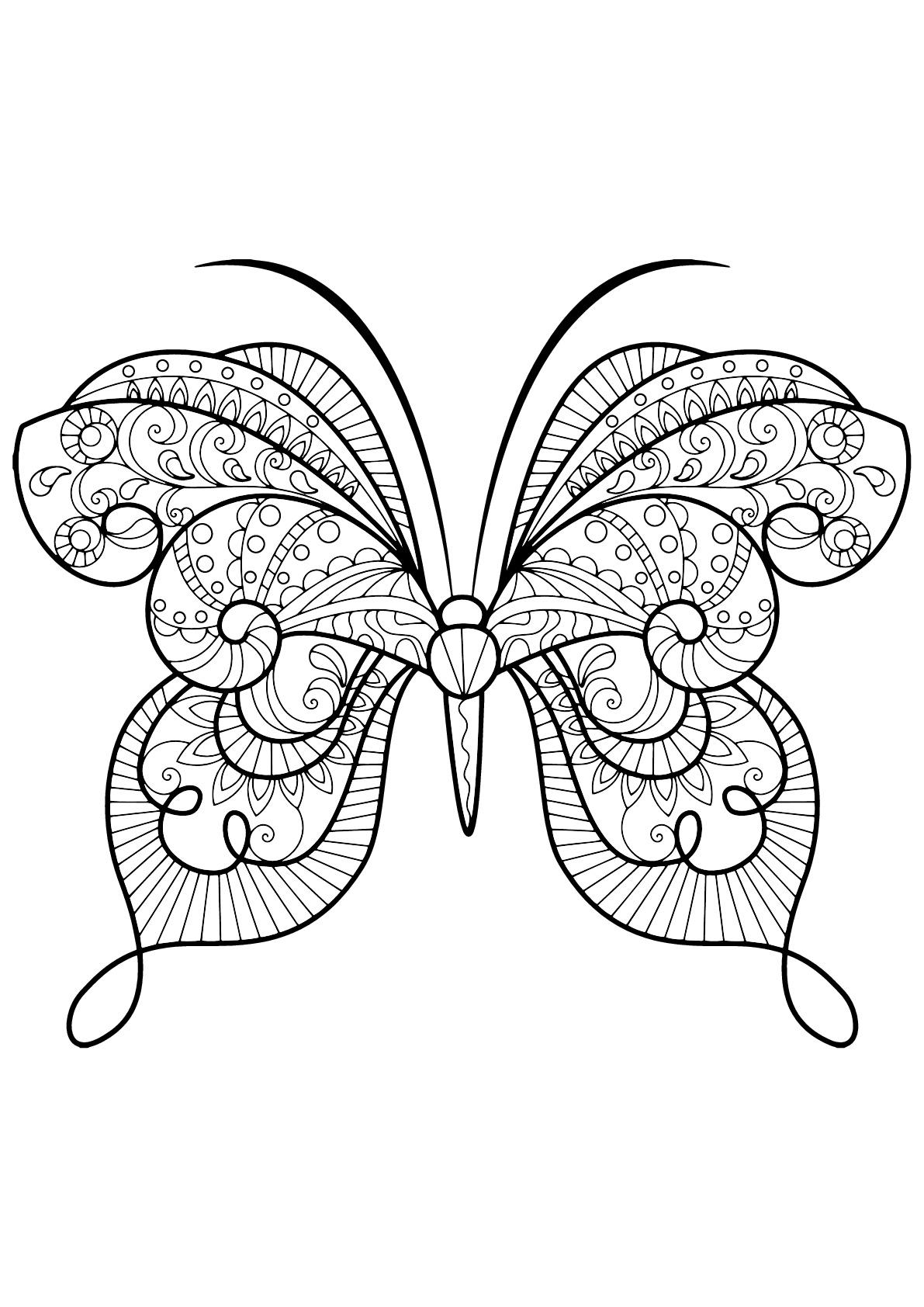Papillon jolis motifs 15 papillons insectes coloriages difficiles pour adultes - Coloriage de papillon ...