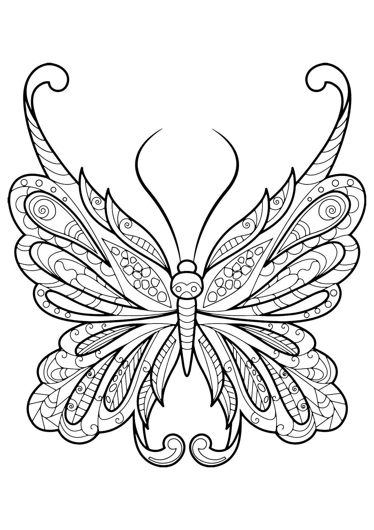 Papillon jolis motifs 18 papillons insectes coloriages difficiles pour adultes - Coloriage de papillon ...
