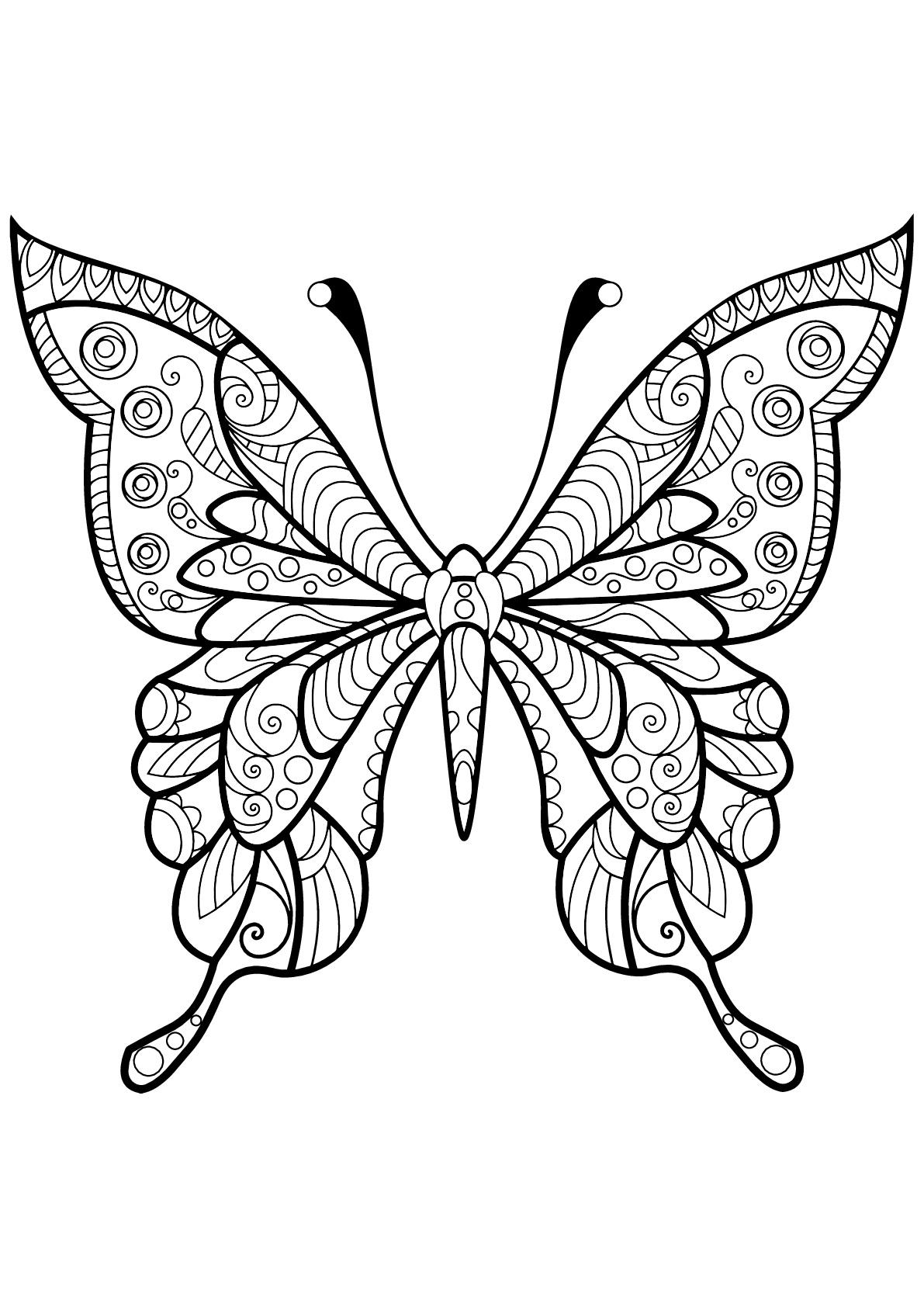 Papillon jolis motifs 4 papillons insectes - Coloriage d un papillon ...