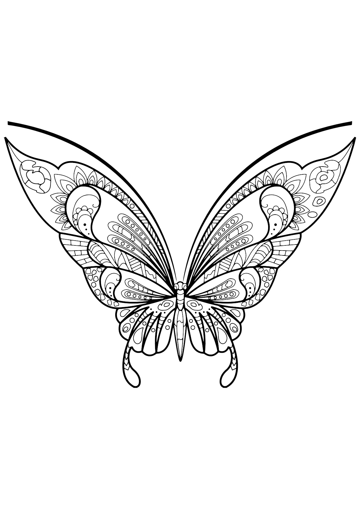 Papillon jolis motifs 7 papillons insectes - Coloriage d un papillon ...