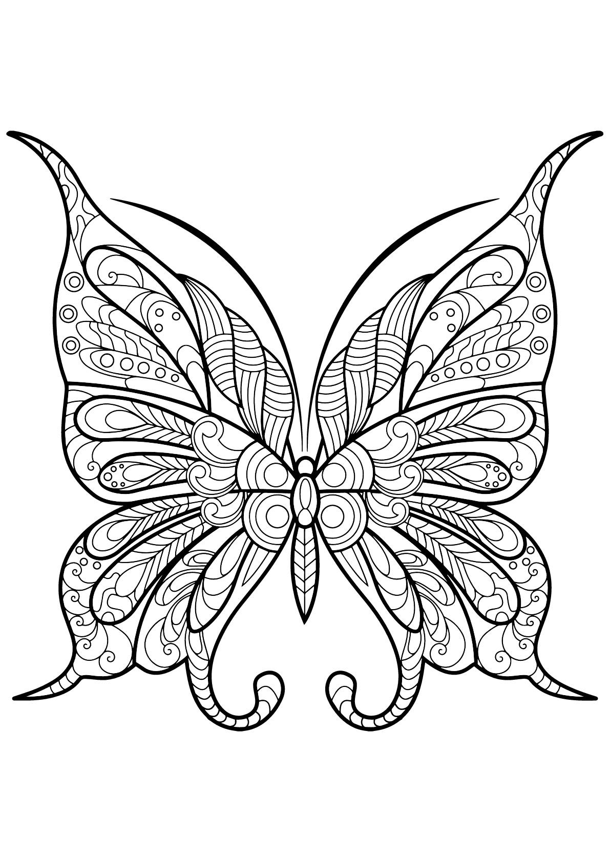Papillon jolis motifs 9 papillons insectes coloriages difficiles pour adultes - Coloriage de papillon ...