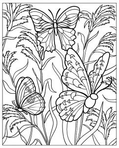 Coloriage difficile papillons