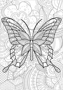 Papillon avec fond fleuri   3