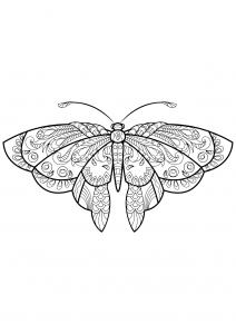 Coloriage papillon jolis motifs 1
