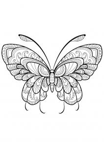 Coloriage papillon jolis motifs 11