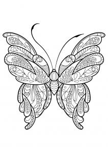 Coloriage papillon jolis motifs 16