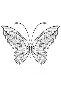 Coloriage papillon jolis motifs 17