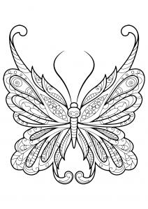 Coloriage papillon jolis motifs 18