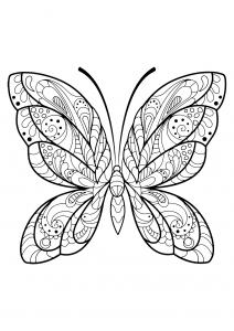 Coloriage papillon jolis motifs 2