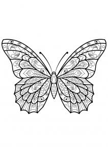 Coloriage papillon jolis motifs 3