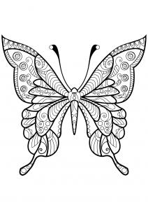 Coloriage papillon jolis motifs 4