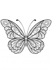 Coloriage papillon jolis motifs 5