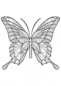 Coloriage papillon jolis motifs 6
