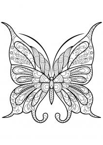 Coloriage papillon jolis motifs 9