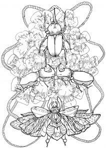 Scarabées et fleurs