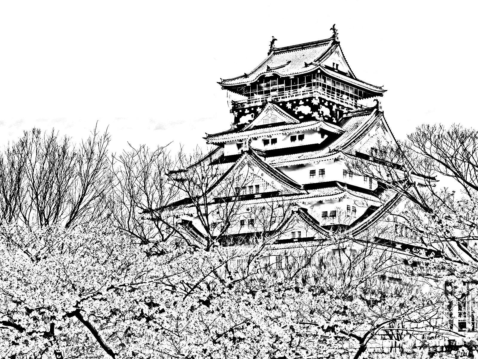 Vue d'ensemble du temple et des cerisiers japonais