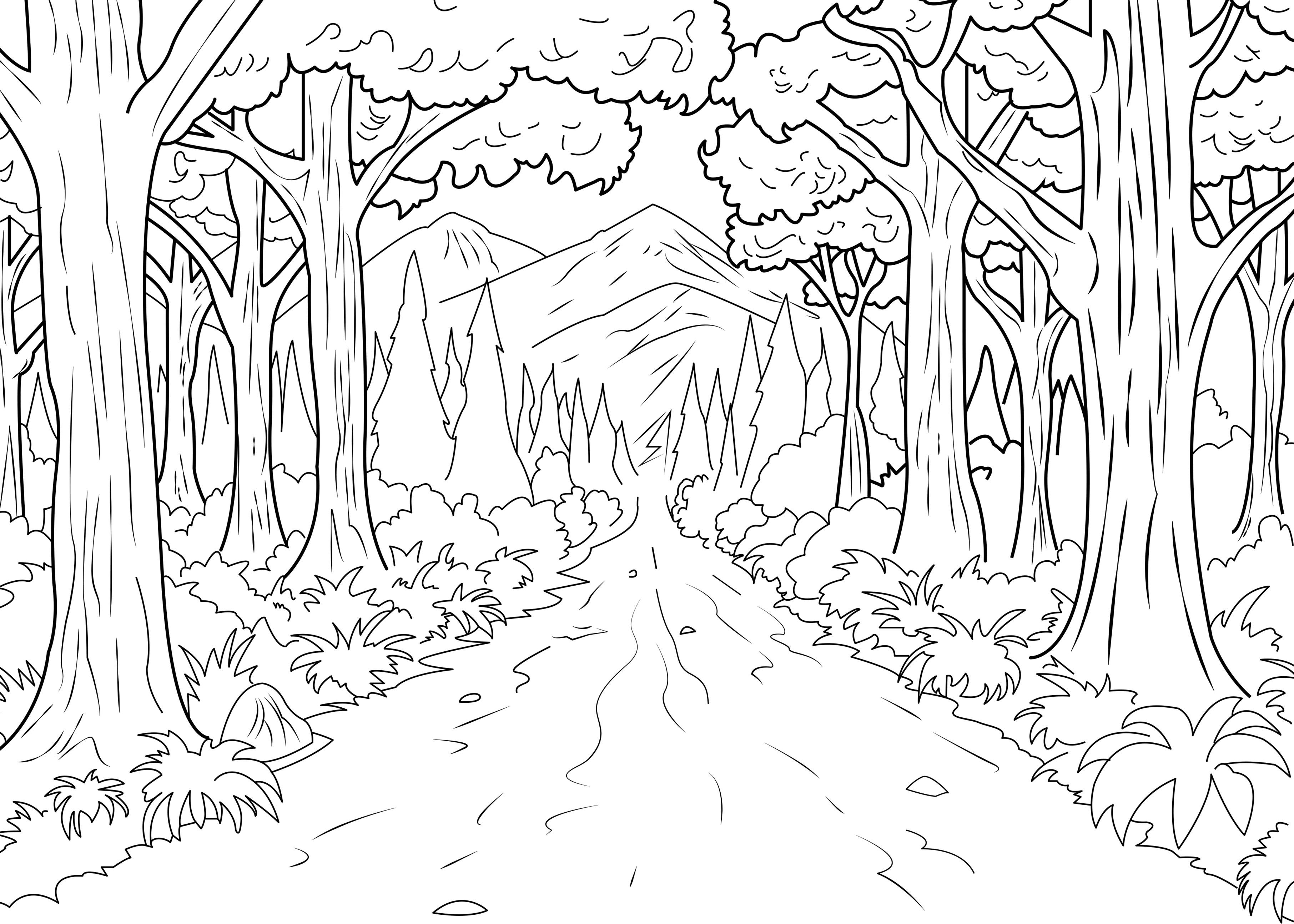 Ce coloriage représente un chemin interminable en plein coeur d'une forêt ! | A partir de la galerie : Jungle Et Foret | Artiste : Celine
