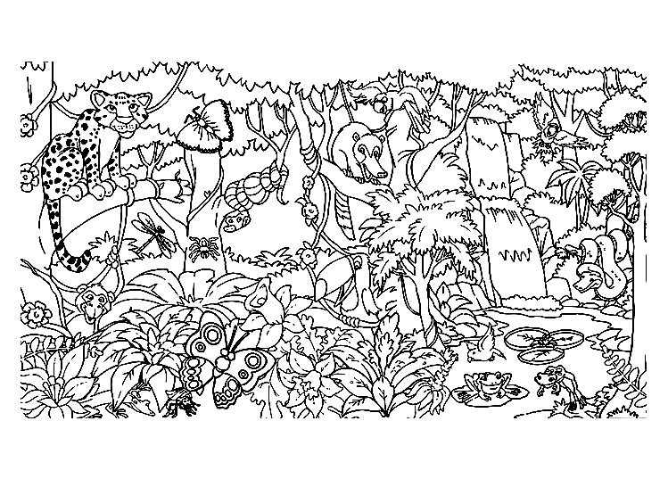 Un coloriage à première vue enfantin mais assez complexe d'une Forêt luxurianteA partir de la galerie : Jungle Et Foret