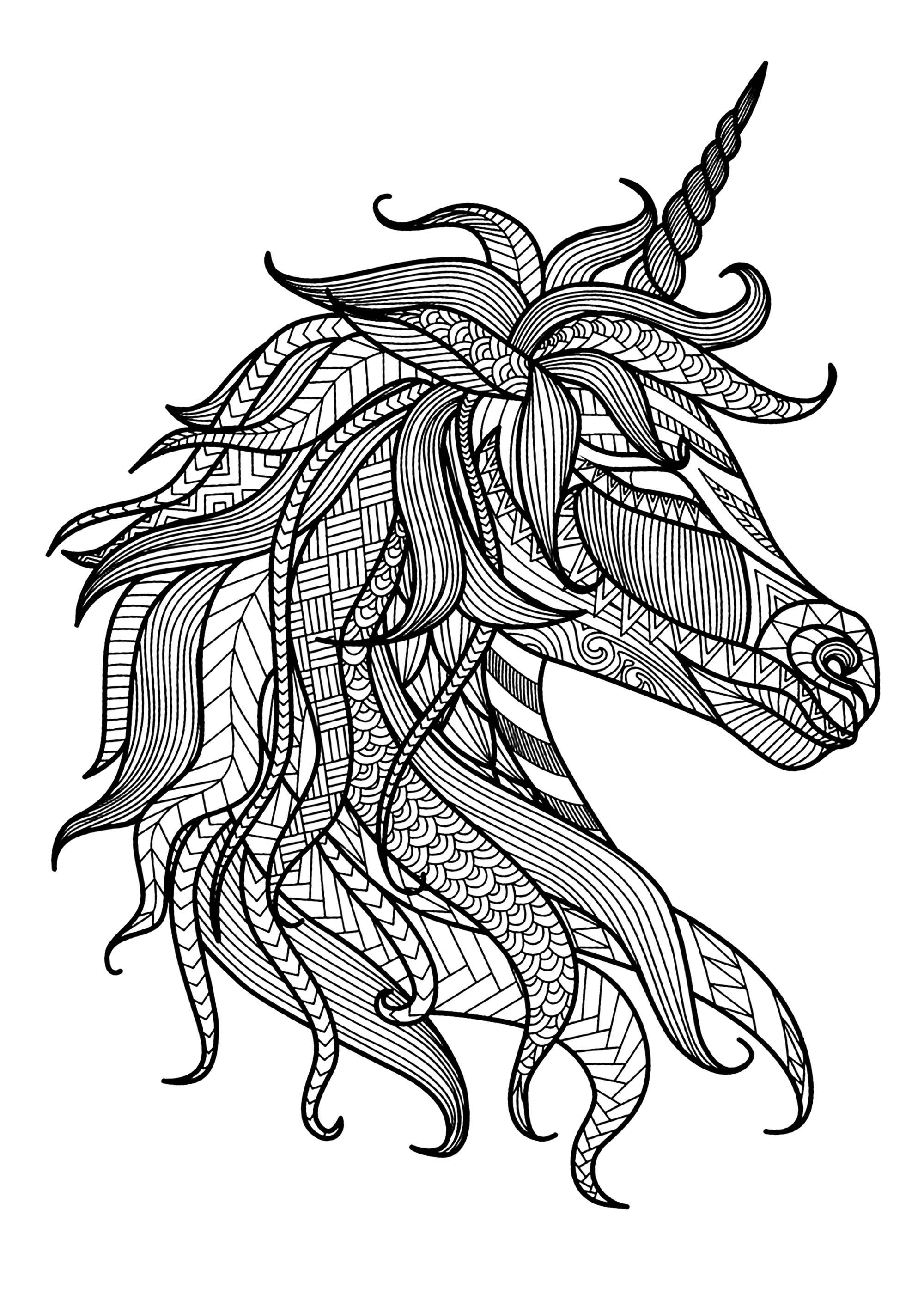 Jolie tête de licorne avec motifs complexes et variés