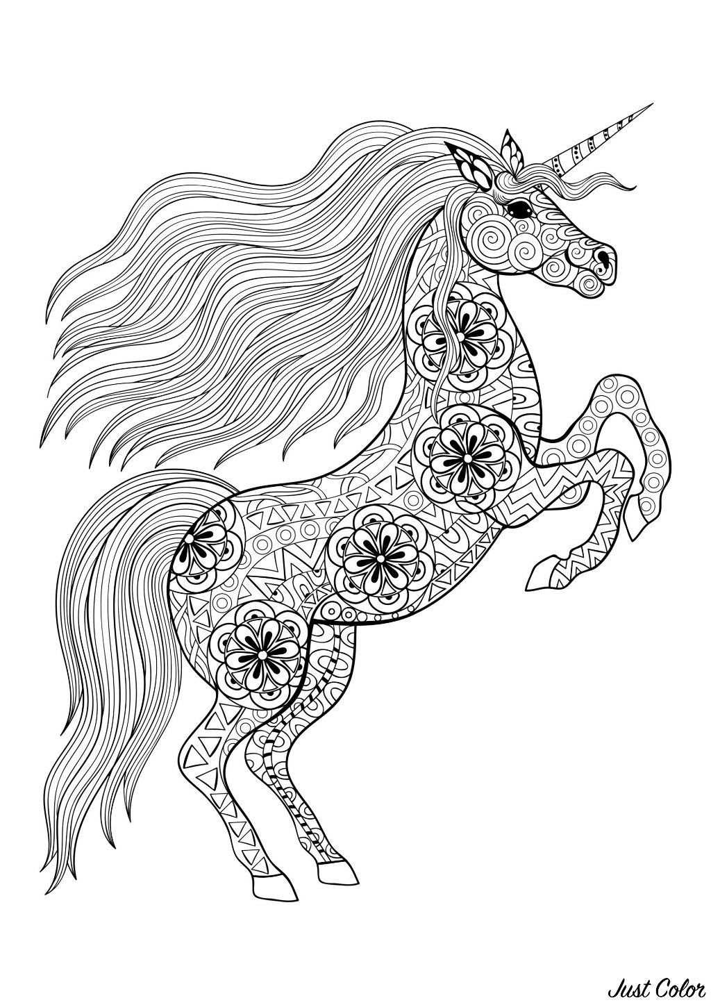 Licorne On Its Two Back Legs Licornes Coloriages Difficiles