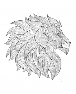 Coloriage adulte tete lion profil