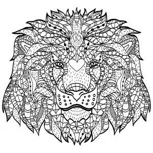 Tête de lion majestueux