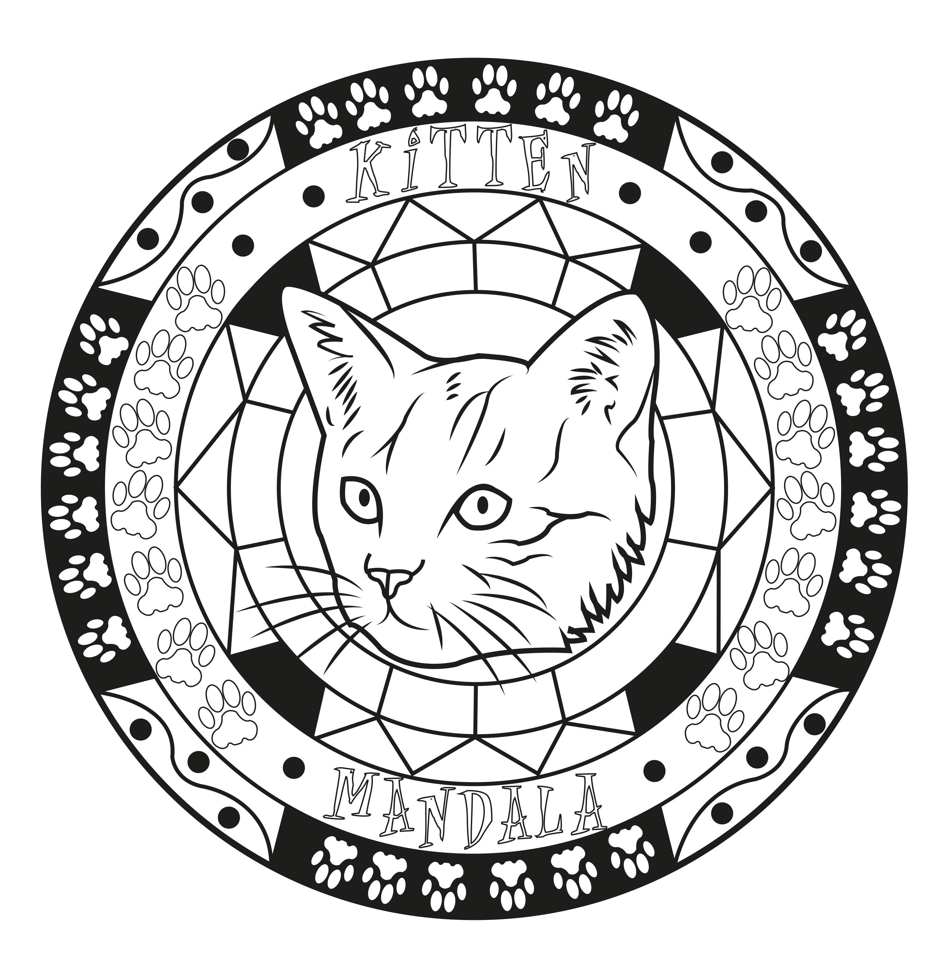 Coloriage d'un Mandala sur le thème des chats