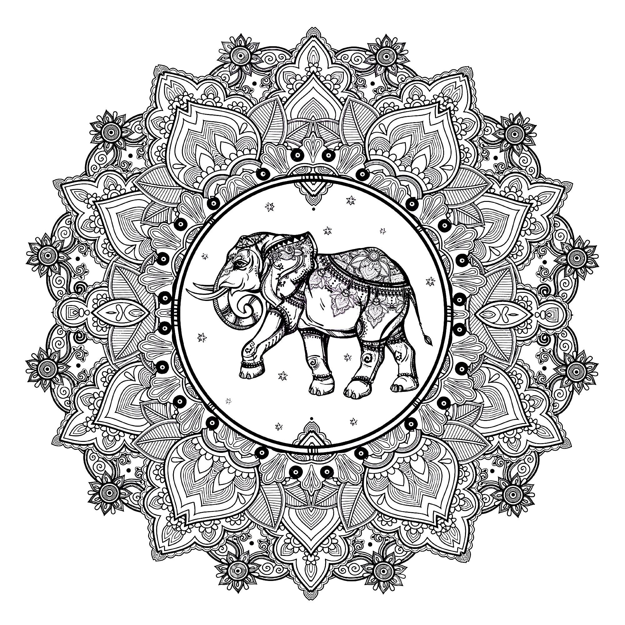 Mandala elephant 123rf | Mandalas - Coloriages difficiles pour ...