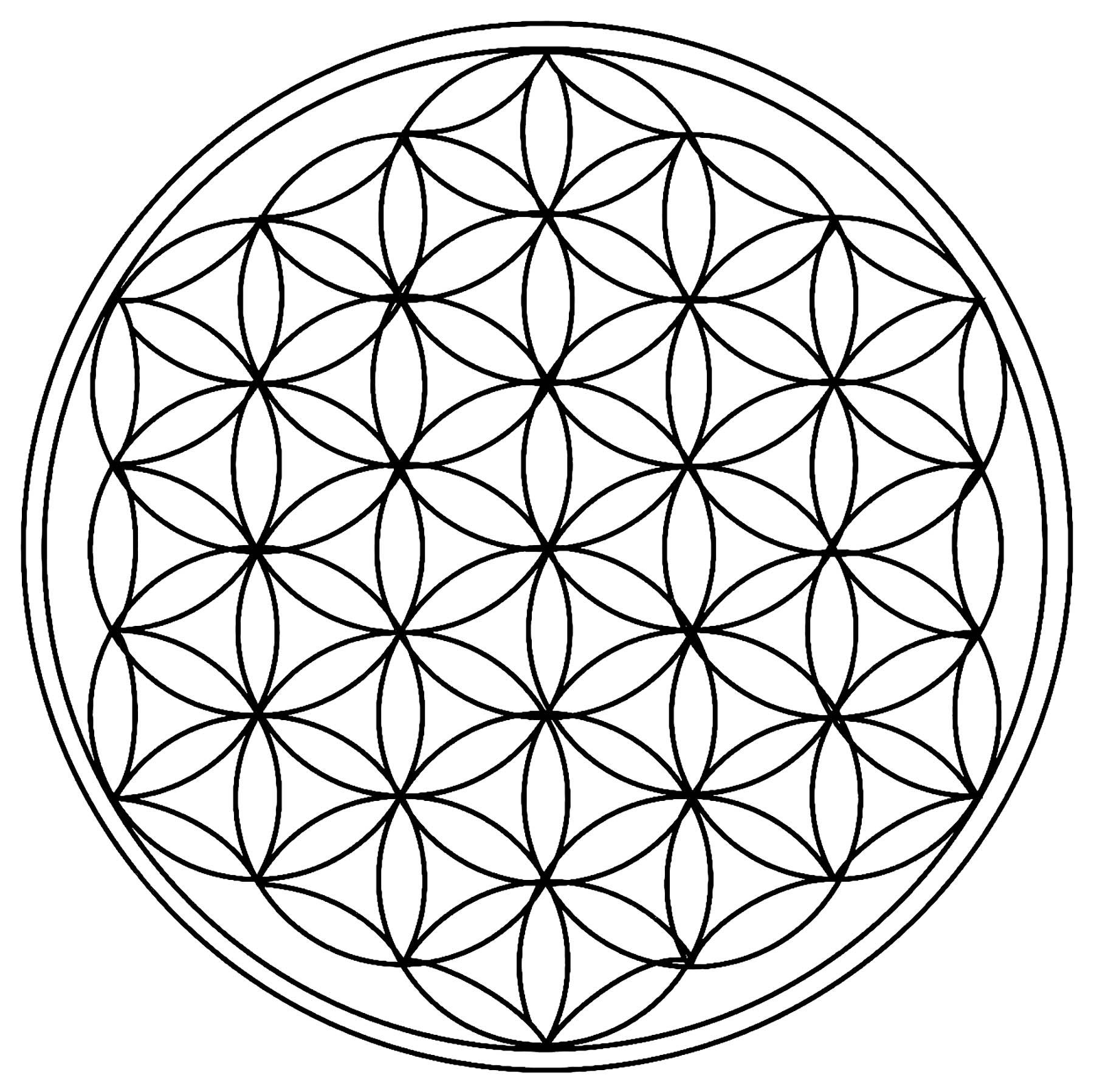 Cercles géométriques / rosaces