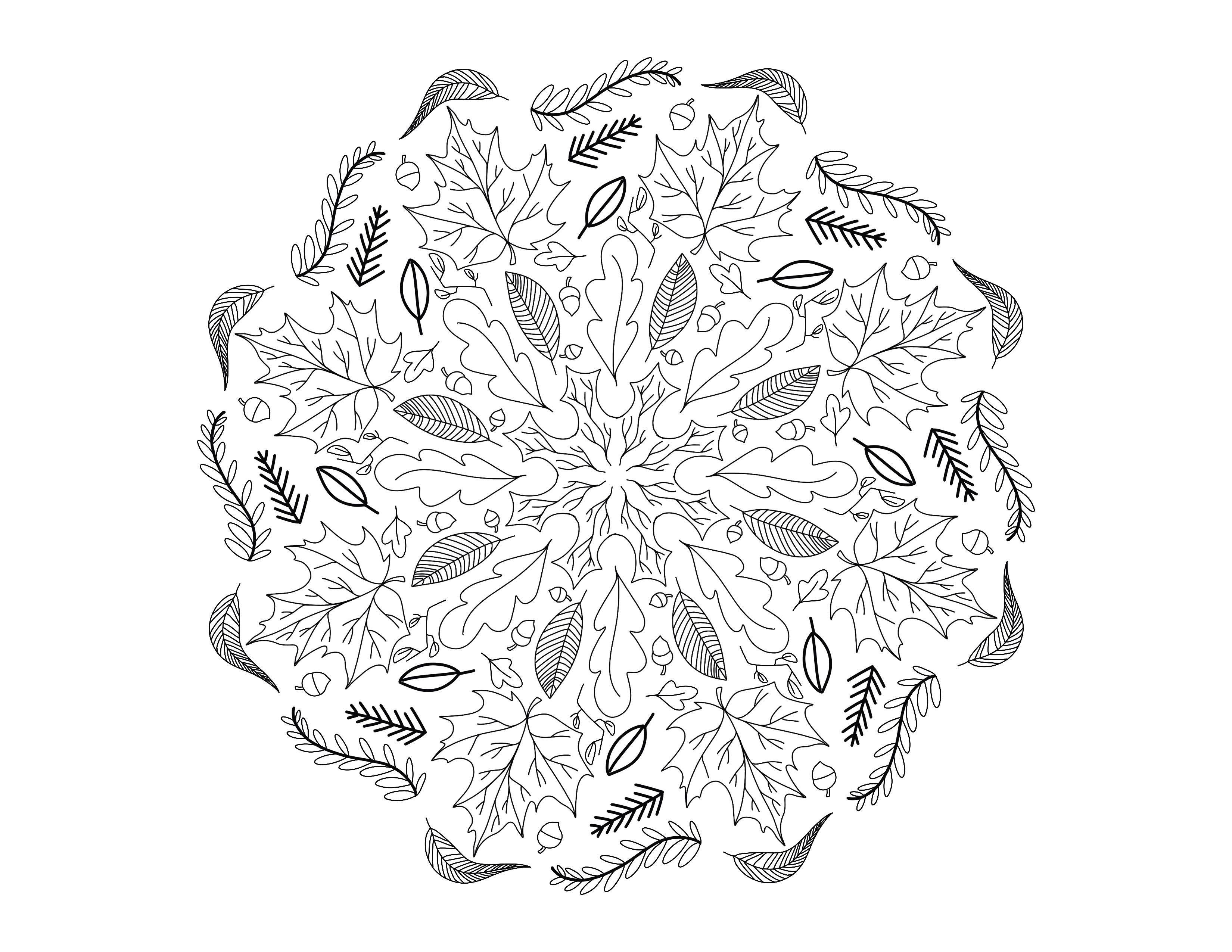 Coloriage Anti Stress Automne.Mandala D Automne Mandalas Coloriages Difficiles Pour