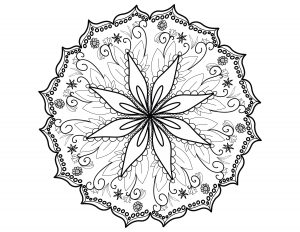 Mandala fin et élégant