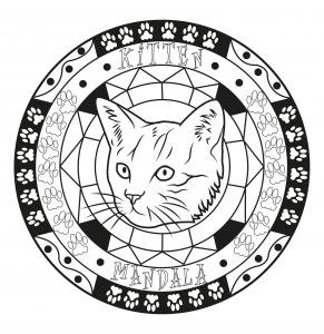 Coloriage adulte mandala chat par allan