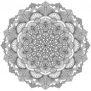 Mandala complexe aux motifs intriqués