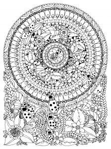 Mandala avec fleurs et coccinelles