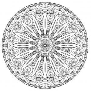 Superbe Mandala complexe avec fleurs