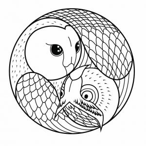Coloriage mandala hibou et chouette
