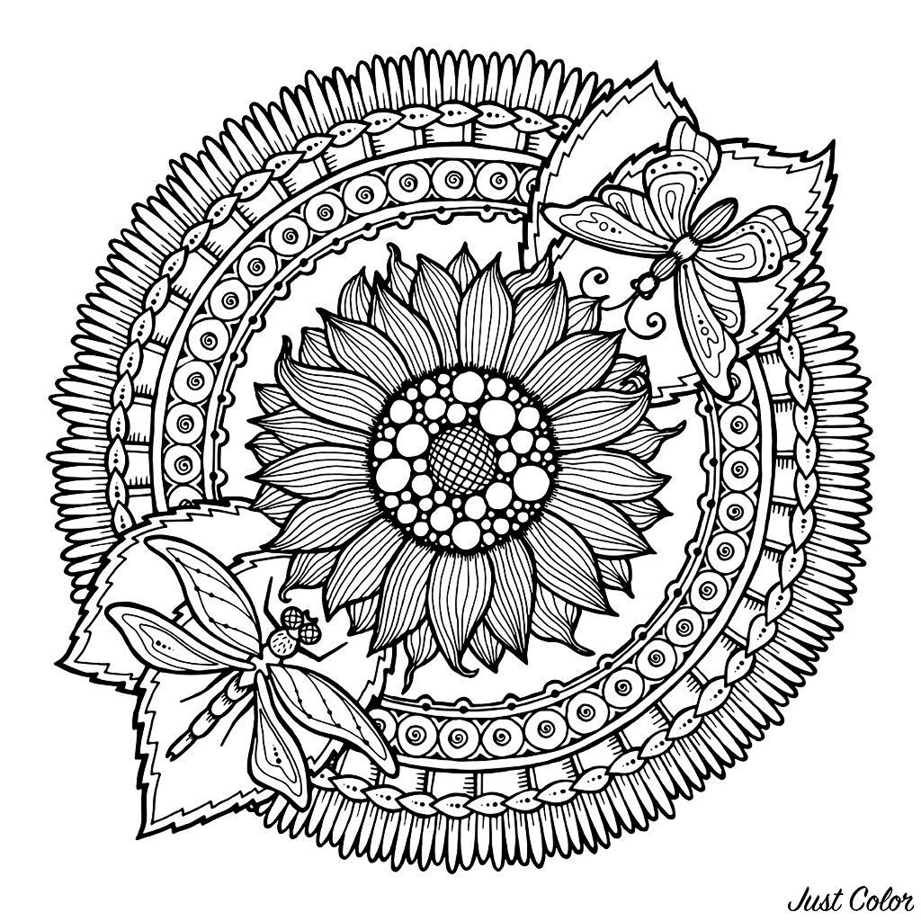 Mandala Libellules et fleurs
