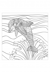 Coloriage adulte mer dauphin