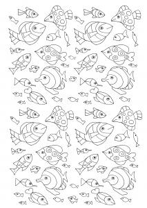 Coloriage nombreux poissons