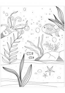 Créatures marines dans les fonds marins