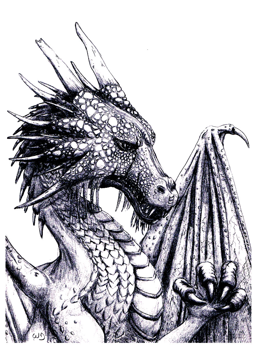 coloriage adulte dragon free to print