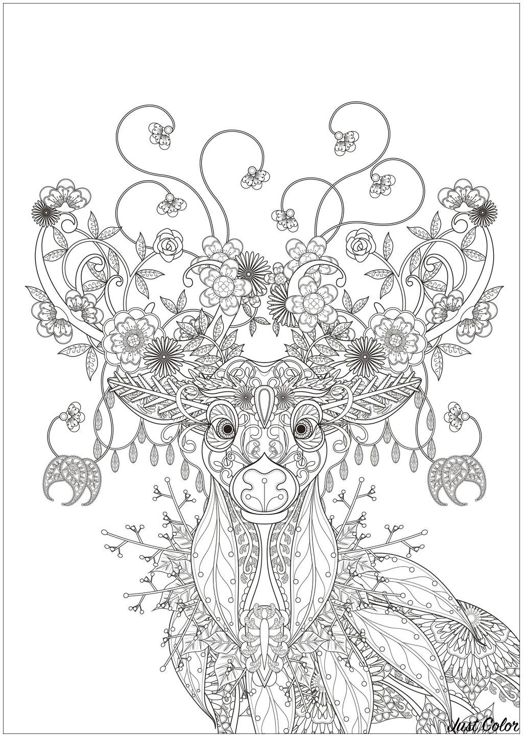Magnifique Cerf dessiné avec des éléments inspirés par la nature : fleurs, feuilles, branches d'arbres ...