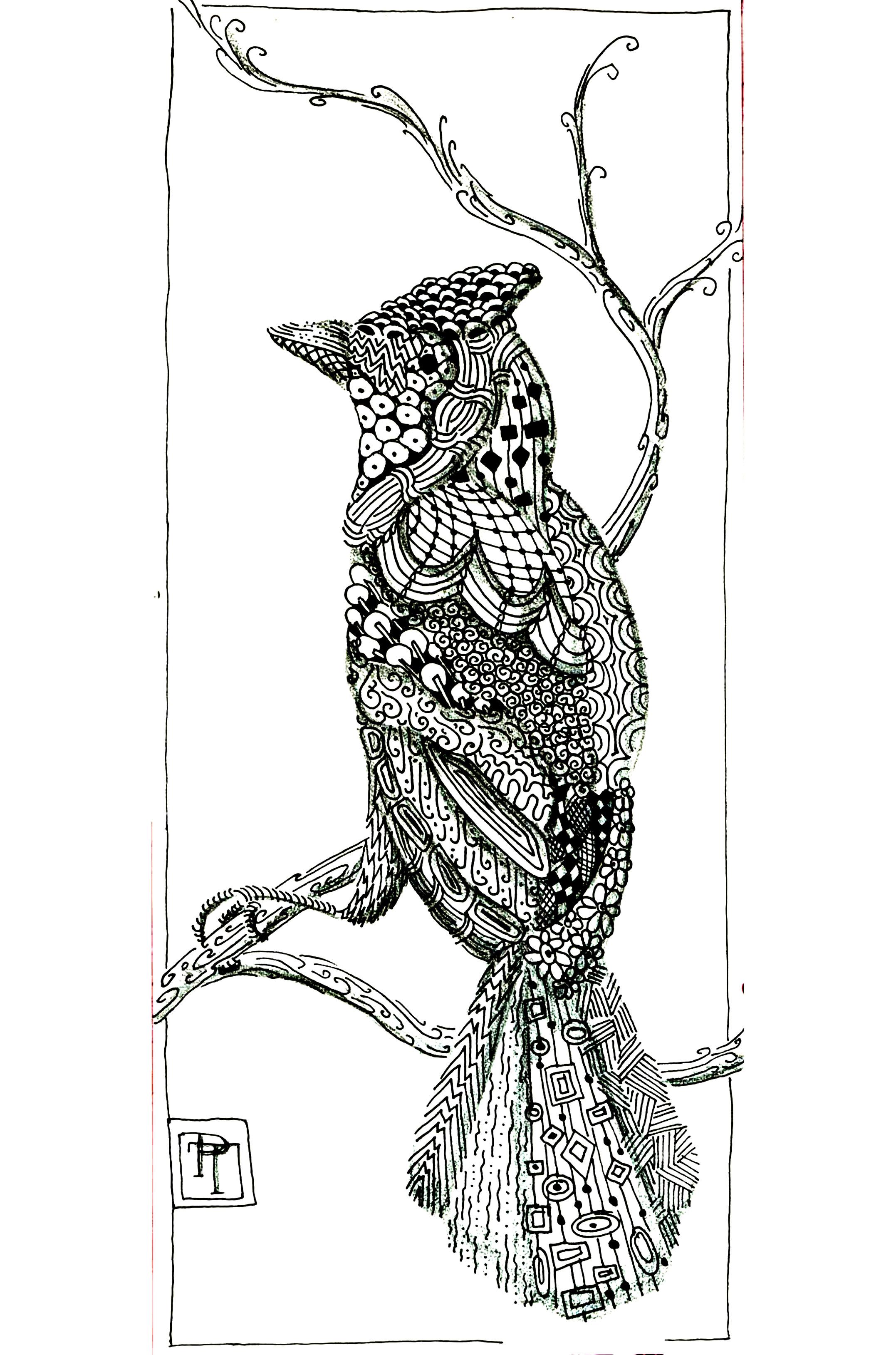 Un bel oiseau et ses motifs à mettre en vie grâce à la magie des couleurs