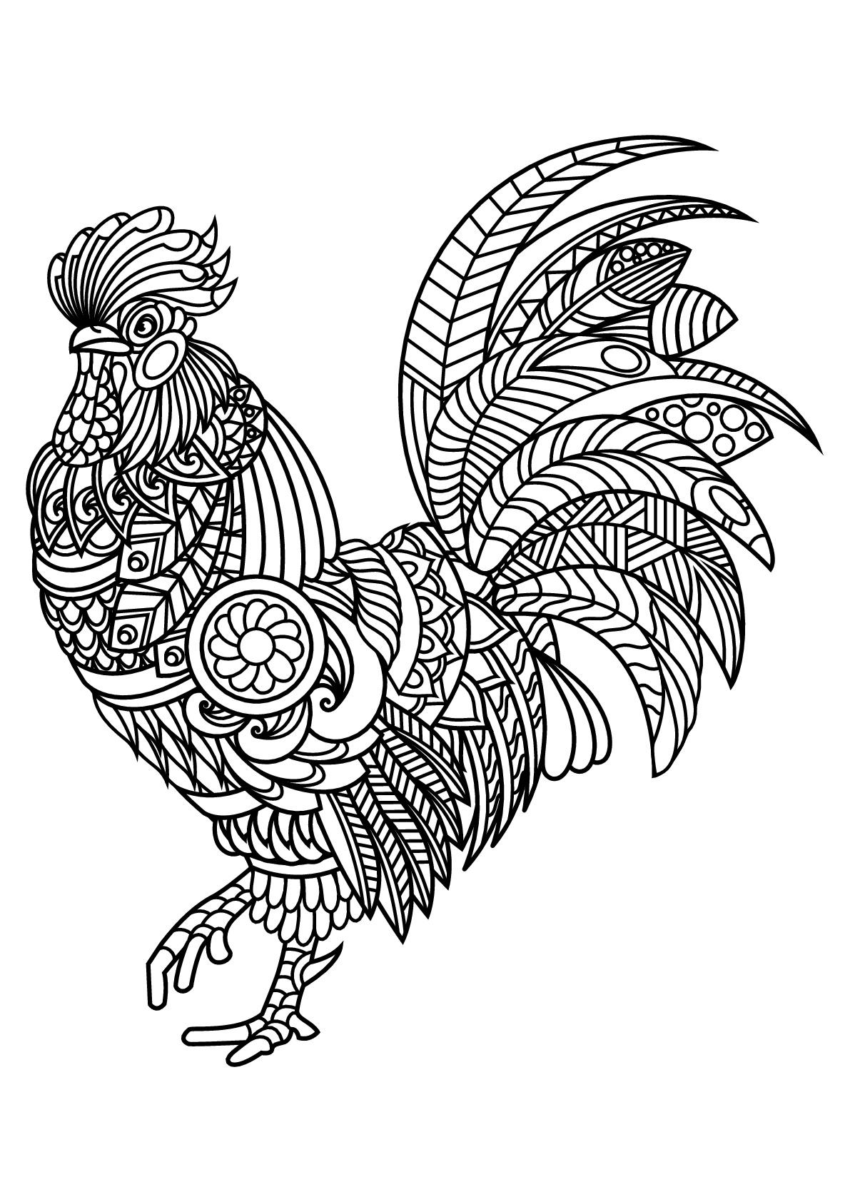 Livre gratuit coq - Oiseaux - Coloriages difficiles pour adultes