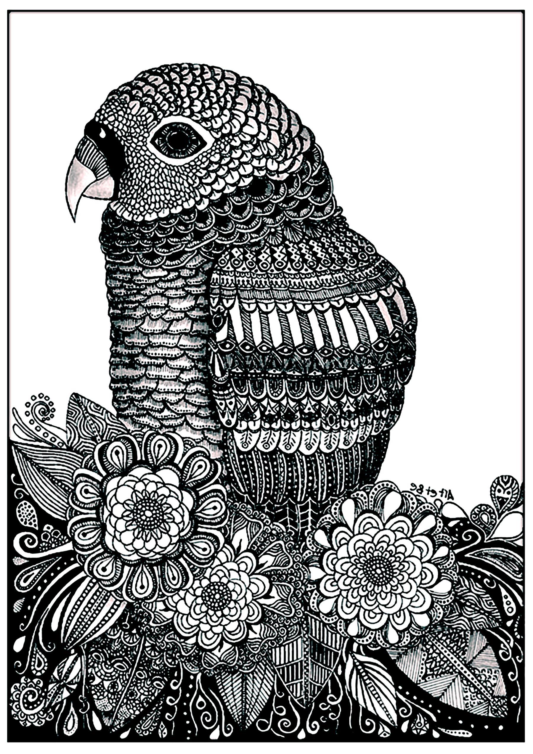Perroquet Et Fleurs Oiseaux Coloriages Difficiles Pour